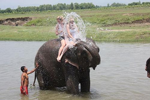 elephant-bath-sauraha